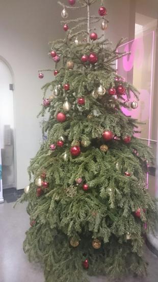 Saddest looking xmas tree!